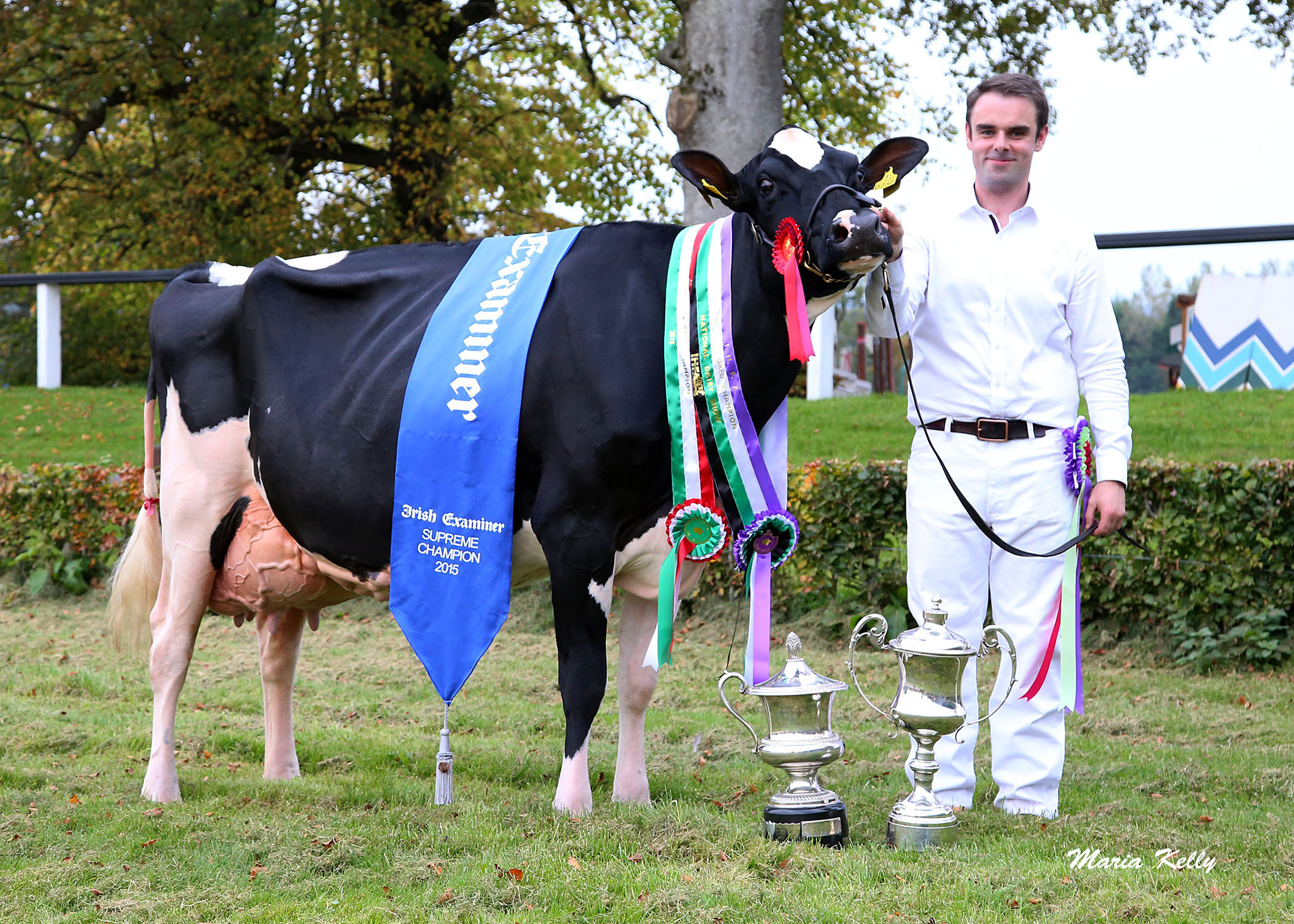 National Dairy Show 2015 Supreme Champion: Baldonnel Goldie Larissa Exhibited by Cyril Dowling and T. Bourke, Baldonnel, Co. Dublin.Handler T.Bourke with John Dowling, photo Maria Kelly