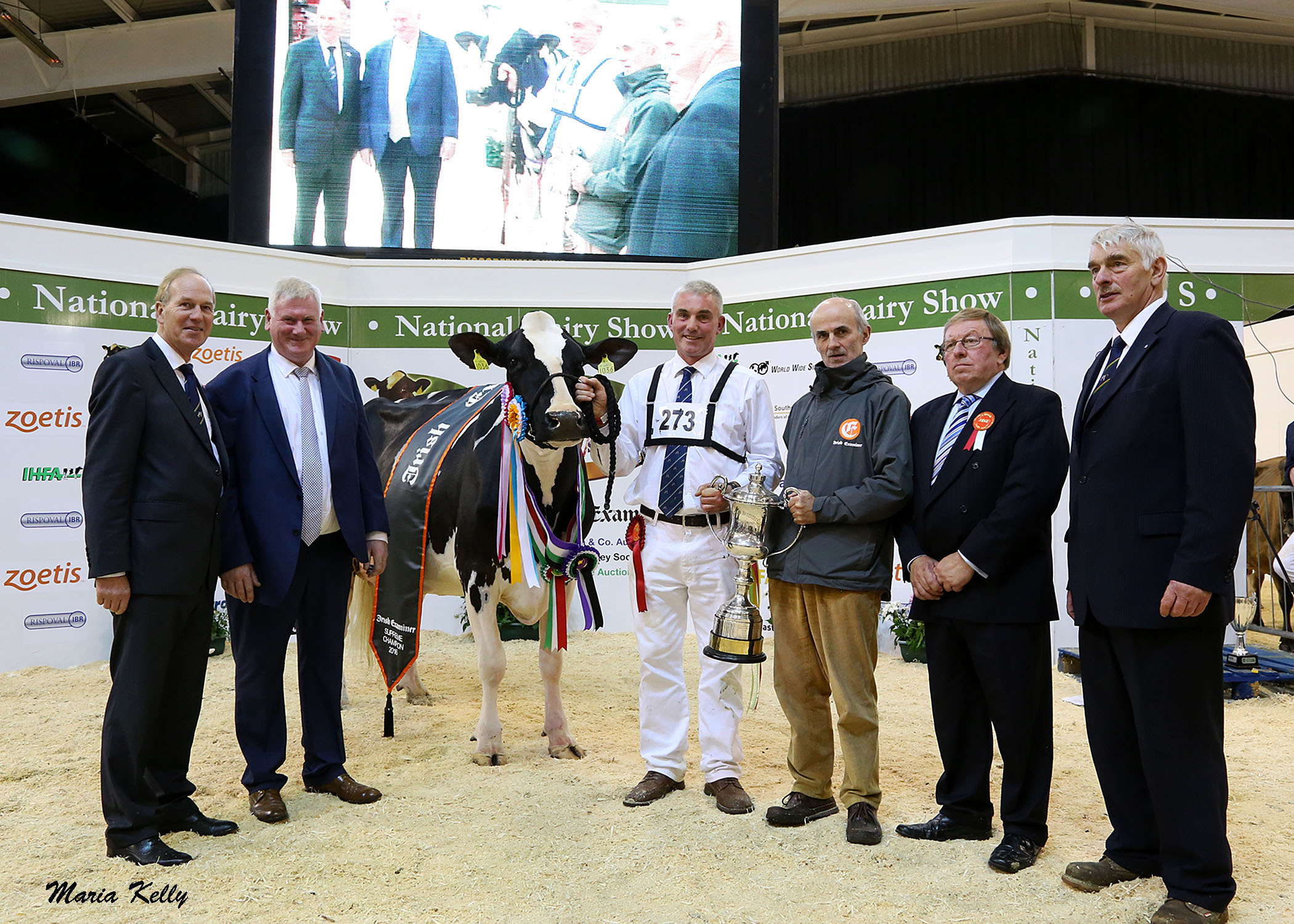 22-10-16 Charles Gallagher, CE IHFA, John Kirby, Show Director with Laurelelm Shottel Daffodil 2 Supreme Champion owned by the Barrett family, Rickey Barrett on halter with Stephen Cadogan, Irish Examiner, sponsor, Meurig James, Judge and Carlisle Smith, President Cork Holstein Friesian Club. Photo Maria Kelly